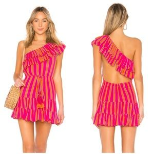 Lovers + Friends -Amity Mini Dress in Pink Stripe